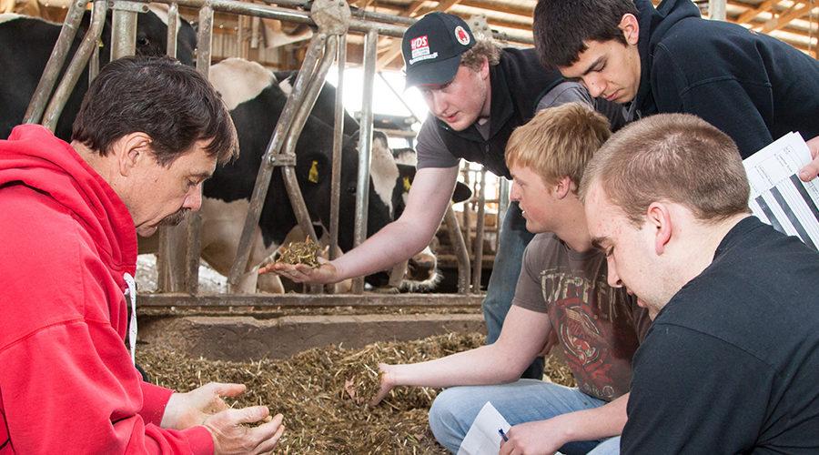 Hero - Dairy science photo
